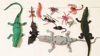 Дурацкий обзор на игрушки животные.Голодные крокодилы едят всех и динозавров.Review on toy animals.
