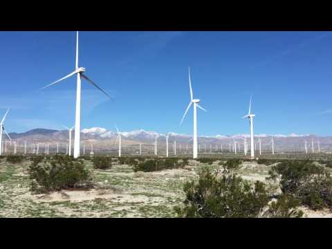 Rambling Business Podcast--Palm Spring's Windmills in Action!