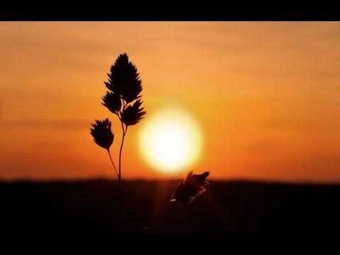 Sunset With Instrumental Raga Bhopali - ( Sitar - Santoor - Flute - Tabla ) - by roothmens