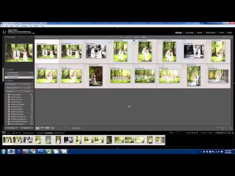 SEO Tips For Photographers | Naming Your Files