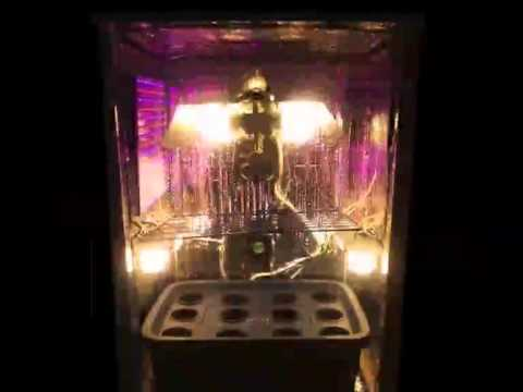 cfl and led light combo grow box youtube. Black Bedroom Furniture Sets. Home Design Ideas