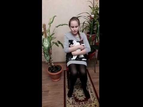 Изображение предпросмотра прочтения – СветланаГолосная читает произведение «Собаки спущены с цепи...» М.И.Цветаевой