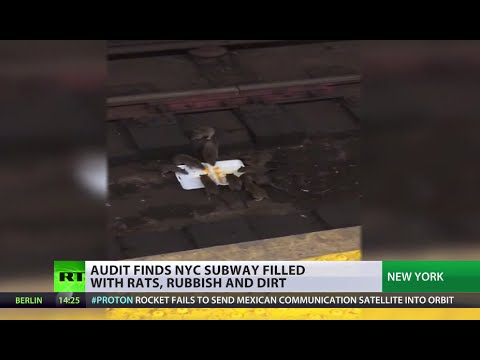 Rats, rubbish & dirt: NYC subway ravaged by rodents Mp3