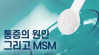 통증의 원인 그리고 MSM 식이유황