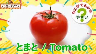 【野菜なにかな?クイズ】かくれているやさいは なーんだ?楽しく知育【赤ちゃん・子供向けアニメ】Vegetables animation for kids