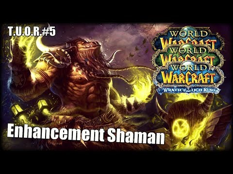 The Underdogs Of Raiding #5 - Enhancement Shaman