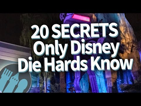 20 Disney World PRO TIPS Only Disney Die Hards Know!
