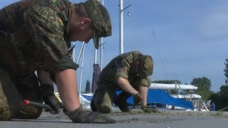 KAMPF GEGEN UNKRAUT: Bundeswehr In Ueckermünde Im Spezialeinsatz