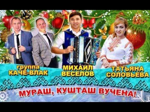 Концерт Михаила Веселова