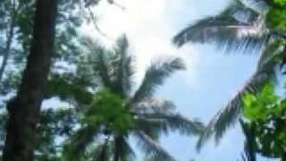 Организация свадебного путешествия на о.Бали