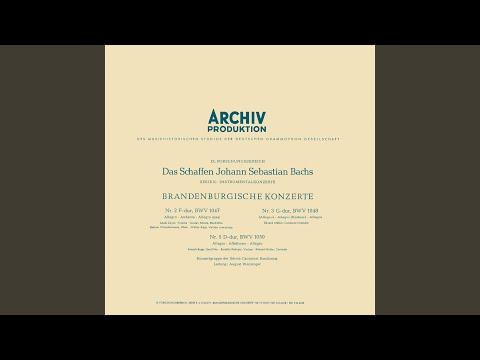 J.S. Bach: Sonata For Viola da Gamba And Harpsichord No.2 In D, BWV 1028 - 3. Andante