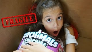Video I Mailed Myself in a Box to Hatchimals HQ and got the NEW HATCHIMALS SURPRISE!!! download MP3, 3GP, MP4, WEBM, AVI, FLV April 2018