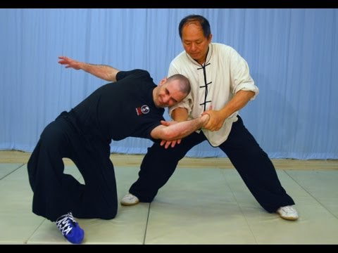 YMAA Taiji Applications (Yang taijiquan) tai chi fighting!