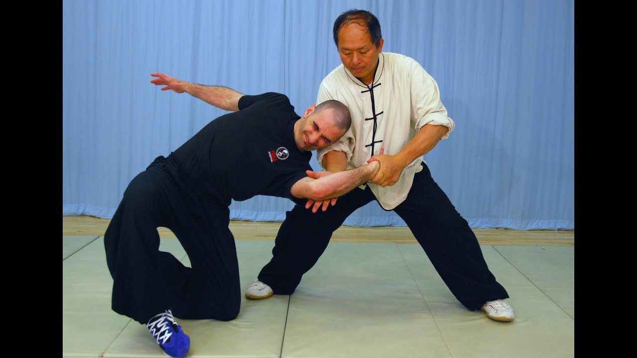 YMAA Taiji Applications (Yang taijiquan) tai chi fighting ...