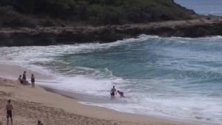 USA | Big Wave | Попытка зайти в океан с большими волнами.Не ржать.