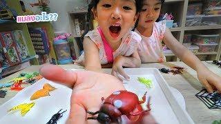 หนูยิ้มหนูแย้ม   รู้จักแมงแมลงและสัตว์มากแค่ไหน?