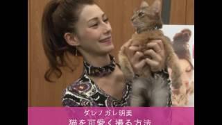 モデルでタレントのダレノガレ明美さんが、フォトブック『MY BABY COCO美...