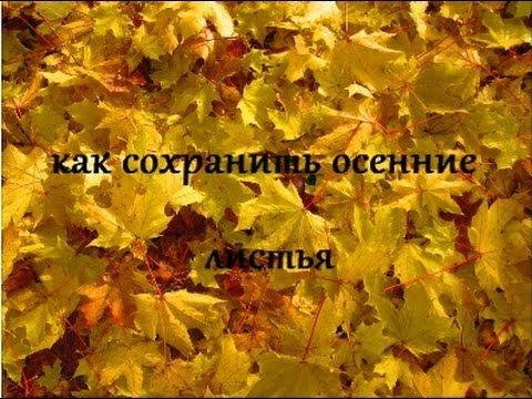 Как обработать осенние листья