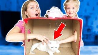 Download Отгадай ЧТО В КОРОБКЕ? Мама и Милана НЕ ОЖИДАЛИ ЭТОГО от ПАПЫ! Смешной Челлендж от Family Box Mp3 and Videos