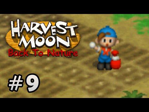 Harvest Moon Back To Nature - Plantação #9