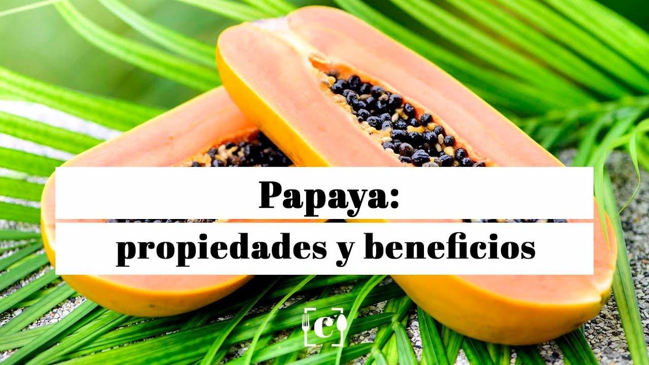 Descripcion de la papaya resumen