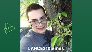Lance210 Classic and Funniest Vines for 2020