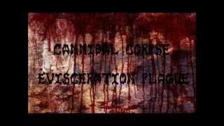 Cannibal Corpse-Evisceration Plague lyrics