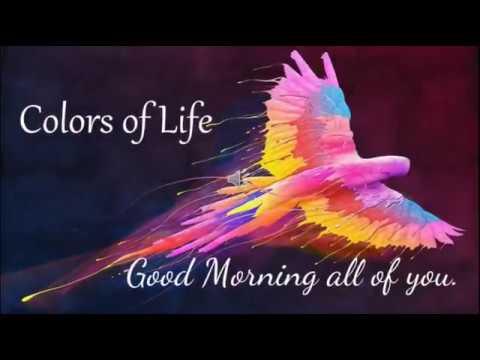 Good Morning Quotes In Englishwishesgreetingsmessagesayari