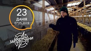 Заробітчани - Дания - Выпуск 23 - 07.05.2019
