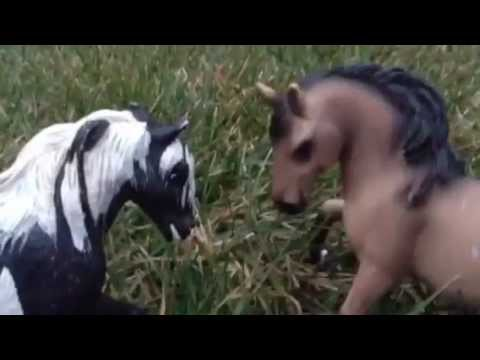 Schleich horse music video- hunger games parody