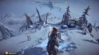Fresh and cold Frozen Aloy (Part 2)