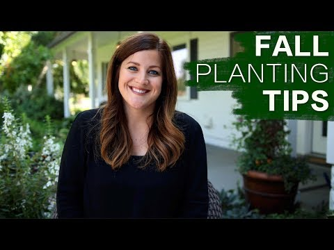Tips for Planting in the Fall // Garden Answer