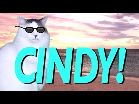 HAPPY BIRTHDAY CINDY! - EPIC CAT Happy Birthday Song