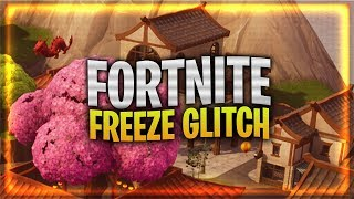 "Fortnite Glitch PS4 & Xbox One! ""Fortnite Glitch Freezing My Screen"" (Fortnite Glitch PS4 Info)"