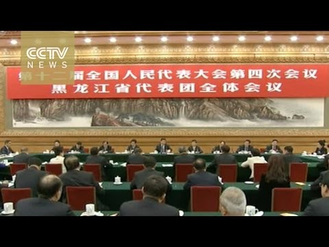 [V观] Two Sessions: Xi joins discussions with Heilongjiang la