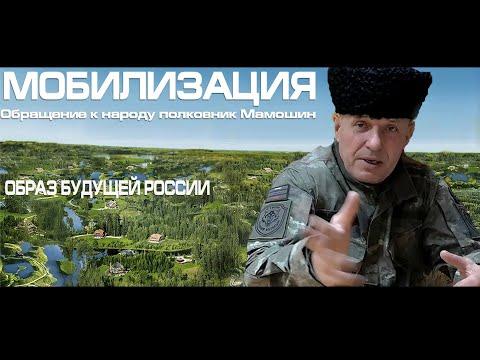 !!МОБИЛИЗАЦИЯ!! КОРОНАвирус Полковник Мамошин !  Народу - народную власть.