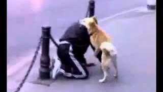 Алкаш и его собака Прикол, Алкаши, Пъяные, Накуренные, Бездельники