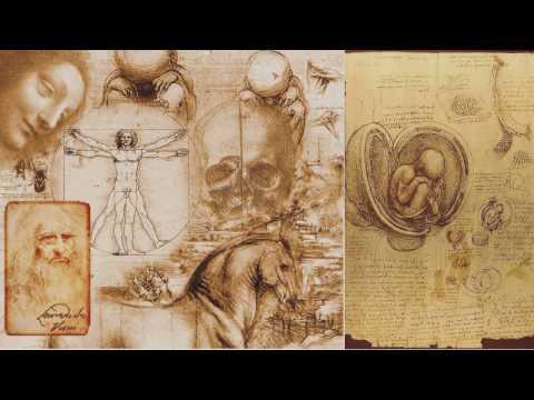 Разум и сознание — Философия