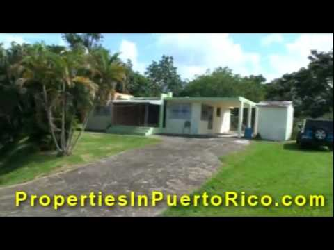 Mountain View Home Sale Rio Grande Puerto Rico Casa Venta Vista Yunque