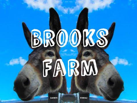 Brooks Farm ( London City Farm) | London Vlog