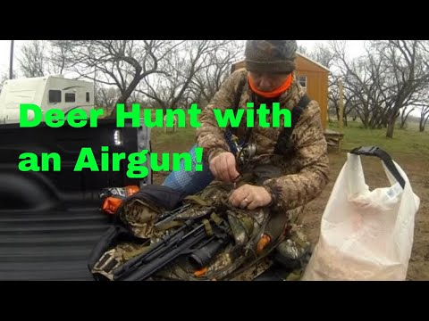 Airgun Hunting: Whitetail In Texas!