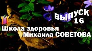 Школа здоровья Михаила СОВЕТОВА ВЫПУСК 16