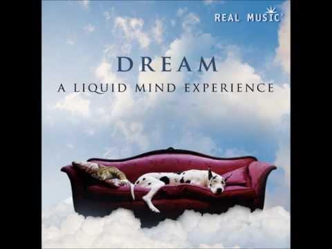 Real Music Album Sampler: Dream a Liquid Mind Experience by Liquid Mind