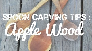 Spoon Carving Tips : Carving Apple Wood - What I've Learned Carving Wooden Spoons In Applewood