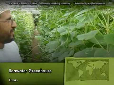 Seawater Greenhouse wins Tech Awards (2006, Oman & Tenerife)