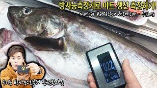 긴장타도록! 방사능측정기로 마트 생선을 측정해보았다! …