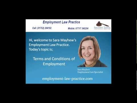 Employment Law Practice - Employment Terms and Conditions