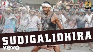 Rayudu - Sudigalidhira Telugu Song Video | Vishal, Sri Divya | D. Imman