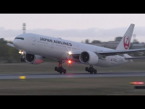 Golf Charter - Japan Airlines 777-346ER [JA731J] Landing and Takeoff at Calgary Airport ᴴᴰ
