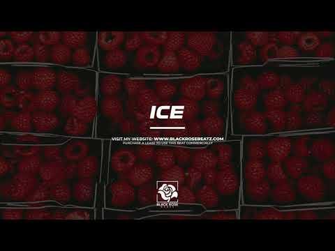 "Free Bounce Flute Type Beat x Tyga ""Ice"" | Freestyle Type Beat | Rap Hard 808 Trap Type Beat 2020"